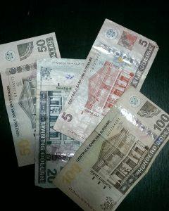 surinamese dollars